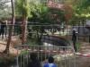 La rivière aux crocodiles